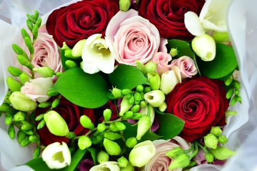 Appleyard London – Flowers You'll Love!