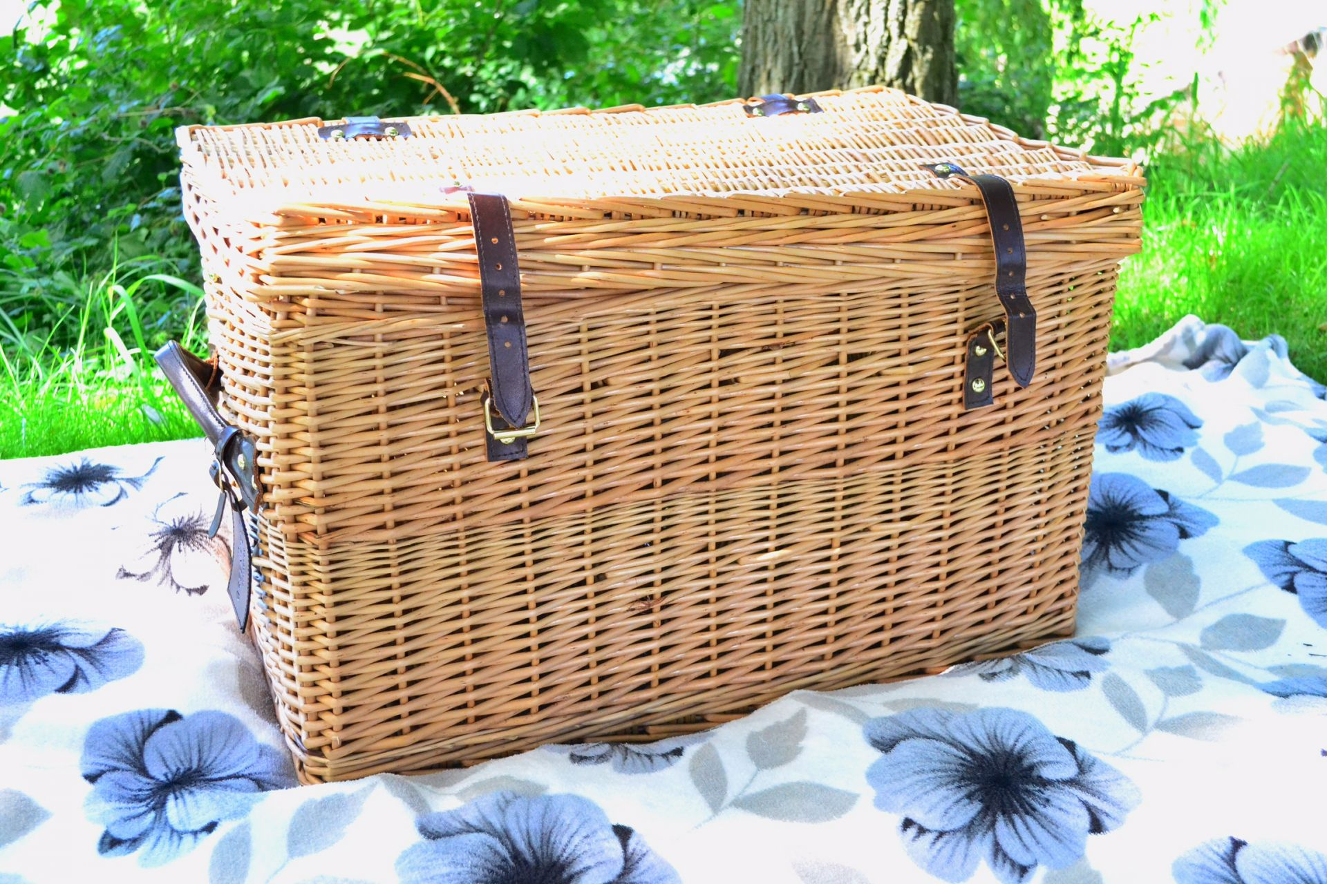 picnic-greenfied-collection